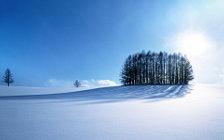 Winter wide wallpapers and HD wallpapers